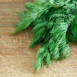 Kilo verdiren beş yeşil sebze