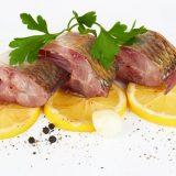 Somon balığının sağlık faydaları ve nefis bir tarif
