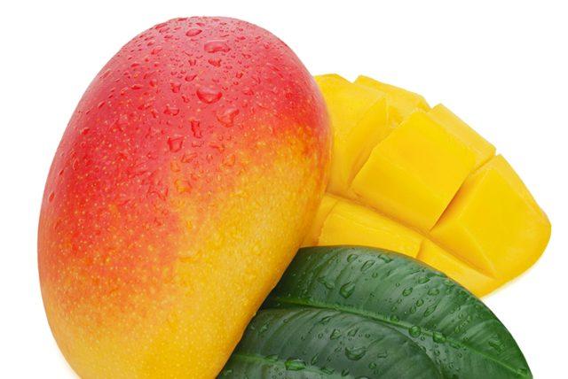 Mango, Kilo aldırmayan soğuk tatlı