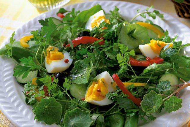 Salata yemek zayıflatır mı?