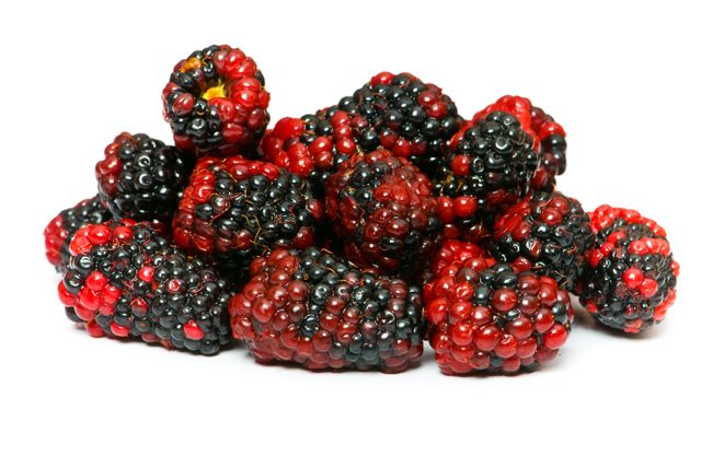 Böğürtlen ve sağlık faydaları, kilo vermeye etkisi