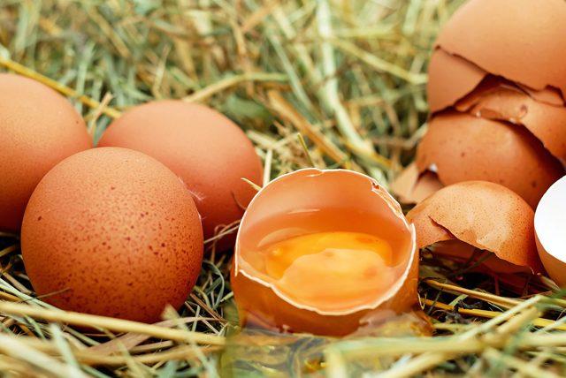 Bağışıklık sistemini destekleyen yumurtalı avokado tarifi