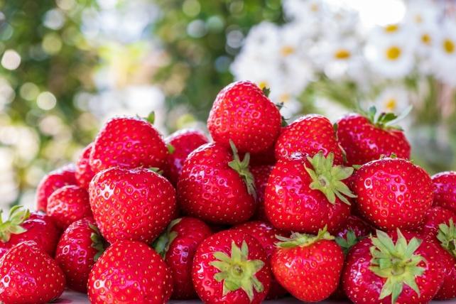 strawberries-5099527_1920-1.jpg