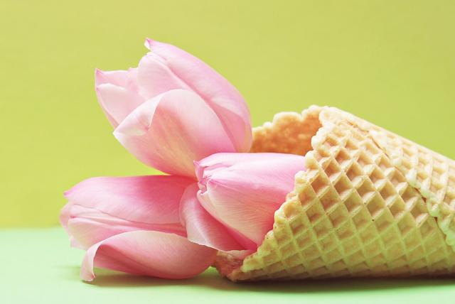 dondurma1.jpg
