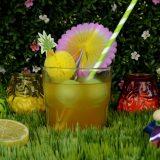Metabolizma hızlandıran yeşil çaylı yaz içeceği
